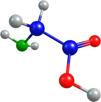 the set of amino acids models