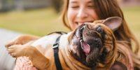 woman hugging playful pug dog